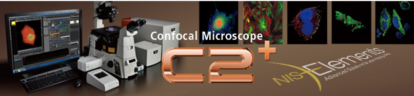 Nikon new C2 GaAsP Confocal